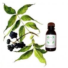 Гидролат бархата амурского (ягода)